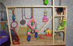 Как выбрать игровой стенд для попугая