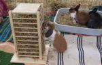 Сенная кормушка для кроликов: какие бывают и как сделать самостоятельно