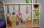Как выбрать и сделать игрушки для попугая своими руками