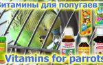 Витамины и минеральные смеси для попугаев волнистых, корелла, жако, неразлучников и других