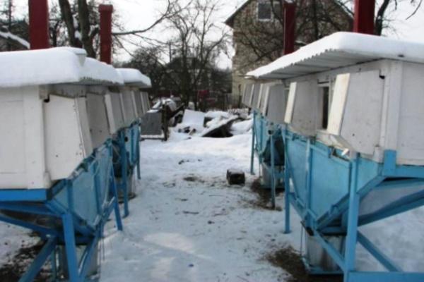 Зимний дом для кроликов