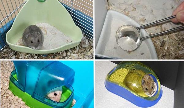 Разные виды туалетов
