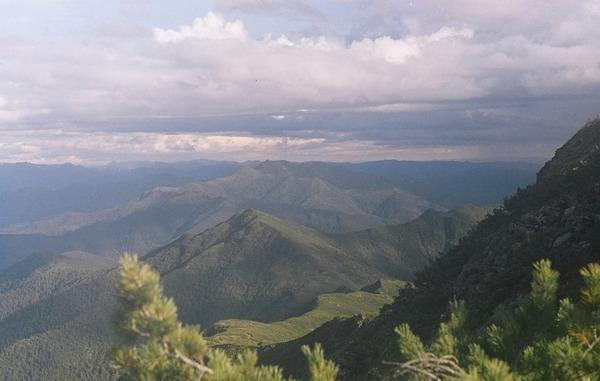 Природа Амурской области