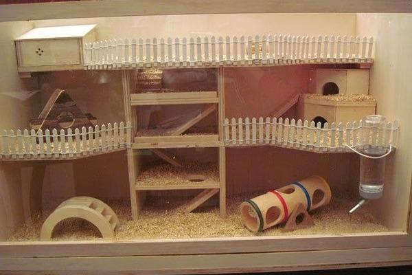 Крутой домик для питомца