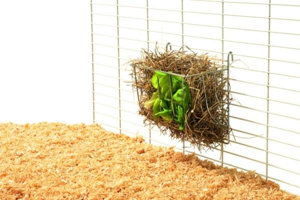 Кормушка с сухой травой