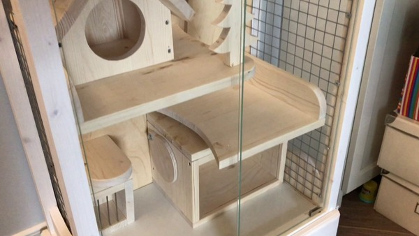 Безопасные укрытия в клетке животного