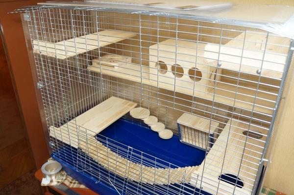 Комфортное жилище для домашнего питомца