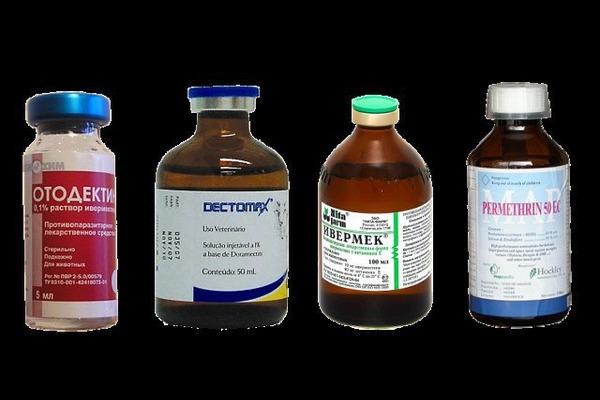 Препараты для лечения трахейного клеща