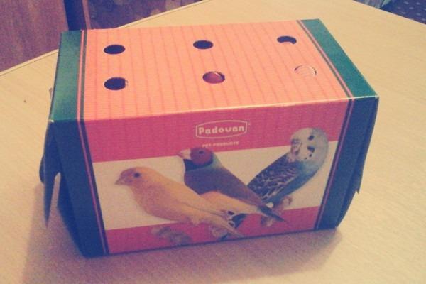 Выбор средства для перевозки попугаев