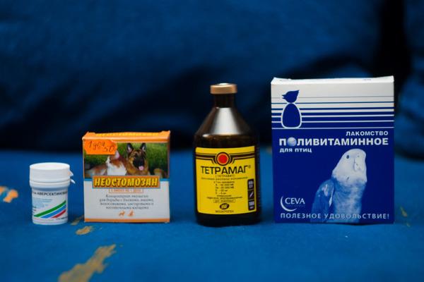 Лекарства от клещей