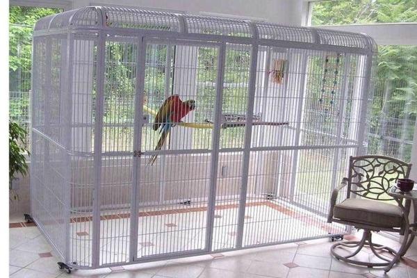 Жилище для большого попугая