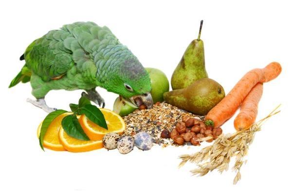 Природные источники витаминов