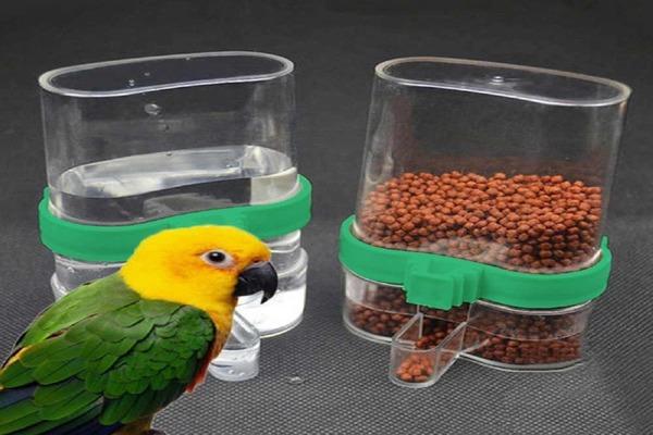 Вода для попугая