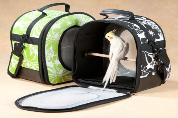 Вид переноски для попугаев