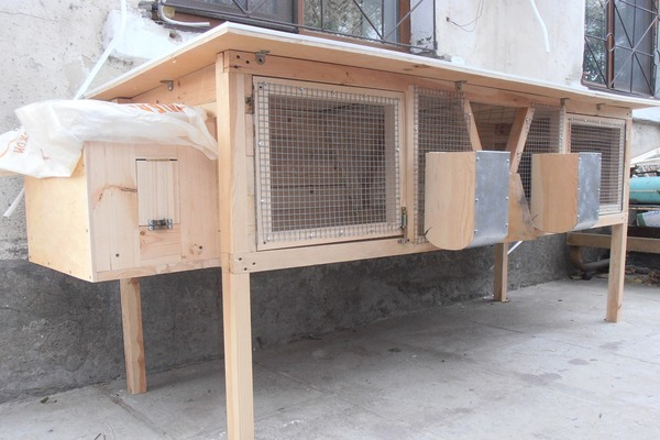 Компактные домики для ушастых